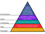 Maslows Hierarchy of Needs: Motivation