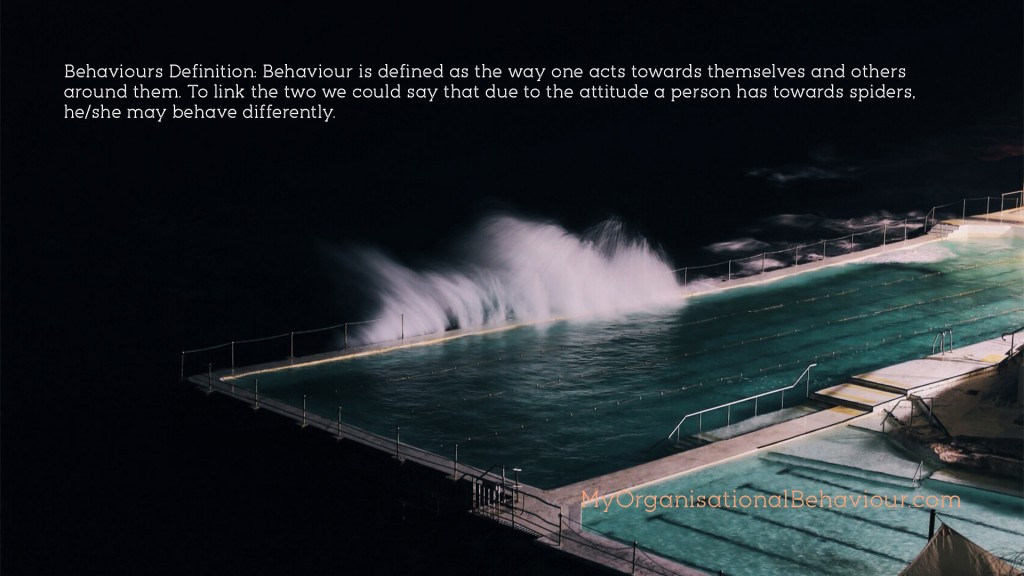 Behaviours in Organisations Wallpapers